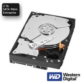 Disque Western Digital Entreprise SATA 3 Gb/s 2 Tb