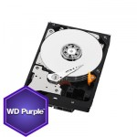 Western Digital Disque Dur WD Purple 4 To