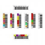 Etiquette code à barre pour bande LTO