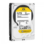 Western Digital Disque Dur WD SE 5To