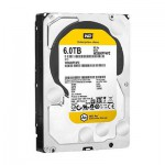 Western Digital Disque Dur WD AE 6To