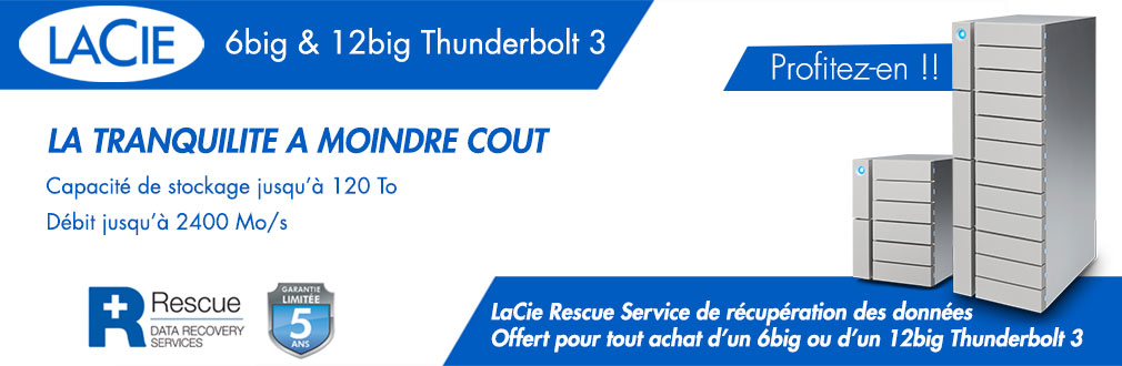 LaCie 6big & 12big Rescue Service